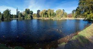 Lago en el parque del otoño Foto de archivo libre de regalías