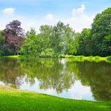 Lago en el parque del verano fotos de archivo