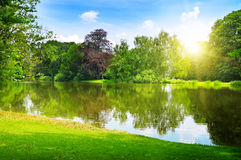 lago en el parque del verano foto de archivo
