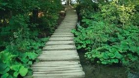 Lago en el parque nacional de Plitvice, Croatia metrajes
