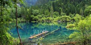 Lago en el parque nacional del jiuzhaigou, Sichuan, China fotografía de archivo libre de regalías