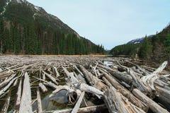 Lago en el pie de la montaña fotografía de archivo libre de regalías