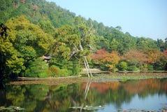 Lago en el templo de Ryoan, Kyoto, Japón Fotos de archivo libres de regalías
