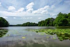 Lago en Hackeberga en Suecia fotos de archivo