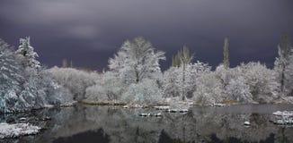 Lago en invierno foto de archivo libre de regalías