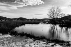 Lago en invierno Fotografía de archivo libre de regalías