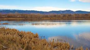 Lago en la pradera con la reflexión del cielo azul foto de archivo libre de regalías