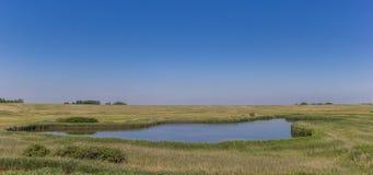 Lago en la reserva natural de Zandkes en la isla de Texel Fotos de archivo libres de regalías