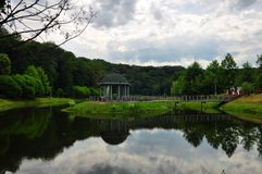 Lago en las maderas Fotografía de archivo libre de regalías