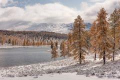 Lago en las montañas Imagenes de archivo