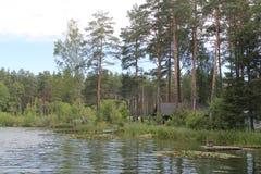 Lago en Lituania, año 2013 Imagen de archivo libre de regalías