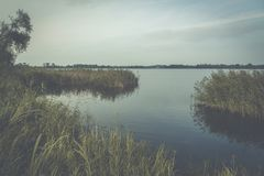 Lago en los matorrales Imagen de archivo libre de regalías