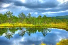 Lago en los mohos HDR.jpg del tinovul Fotografía de archivo