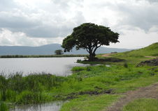 Lago en Ngorongoro - Tanzania Fotos de archivo libres de regalías