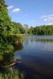 Lago en parque Fotografía de archivo