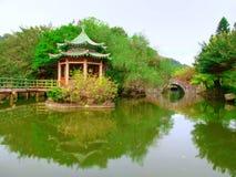 Lago en parque fotos de archivo