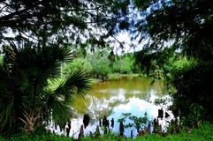 Lago en parque del camping de rv Fotografía de archivo libre de regalías