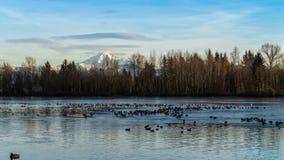 Lago en parte congelado con el fondo capsulado nieve de la montaña Foto de archivo libre de regalías