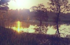 Lago en Sri Lanka fotografía de archivo libre de regalías
