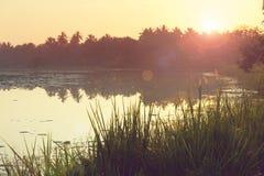 Lago en Sri Lanka imagen de archivo