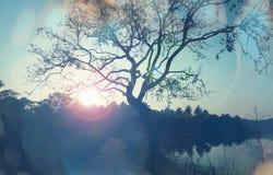Lago en Sri Lanka foto de archivo libre de regalías