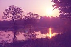 Lago en Sri Lanka fotos de archivo