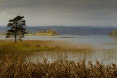 Lago en tonos del otoño Imágenes de archivo libres de regalías