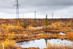 Lago en tundra en la península de Taimyr Foto de archivo libre de regalías