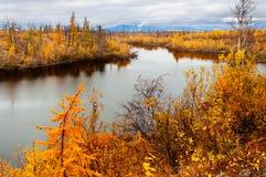 Lago en tundra en la península de Taimyr Imágenes de archivo libres de regalías