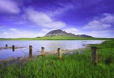 Lago en verano soleado Fotos de archivo
