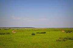 Lago Engure Imagens de Stock