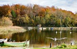 Lago Ennell Irlanda Fotos de archivo libres de regalías