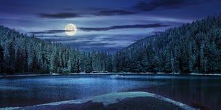 Lago entre a floresta nas montanhas na noite Foto de Stock Royalty Free
