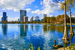Lago Eola Florida E.U. do fom da skyline de Orlando Foto de Stock Royalty Free