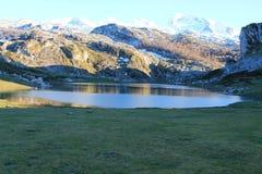 Lago Ercina, Cangas de OnAss,西班牙 库存照片
