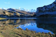 Lago Ercina, Cangas de OnAss,西班牙 免版税库存照片
