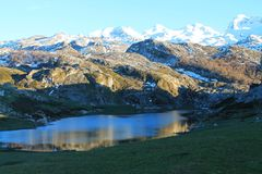 Lago Ercina, Cangas de OnAss,西班牙 免版税库存图片