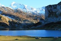 Lago Ercina, Cangas de OnÃs, Spanien Lizenzfreies Stockfoto