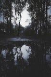 Lago escuro na noite na floresta com reflexão Fotografia de Stock