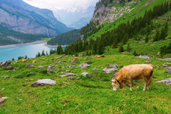Lago Eshinen, Kandersteg, Svizzera Fotografie Stock