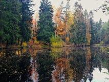 Lago espelhado fotos de stock