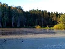 Lago evening no por do sol Imagens de Stock Royalty Free