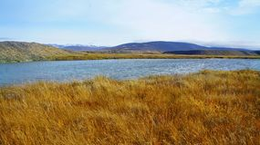 Lago Far Hills della radura della tundra di autunno Fotografia Stock