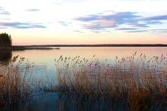 Lago fig na noite ver?o imagem de stock royalty free