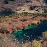 Lago fire Fotografia Stock