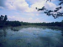 Lago fishing Foto de archivo