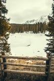 Lago, floresta do abeto e montanhas congelados Lago Carezza em Tirol sul em Itália Fotos de Stock