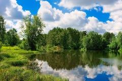 Lago forest imagem de stock royalty free