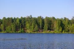 Lago forest Fotos de archivo