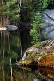 Lago forest Immagine Stock Libera da Diritti
